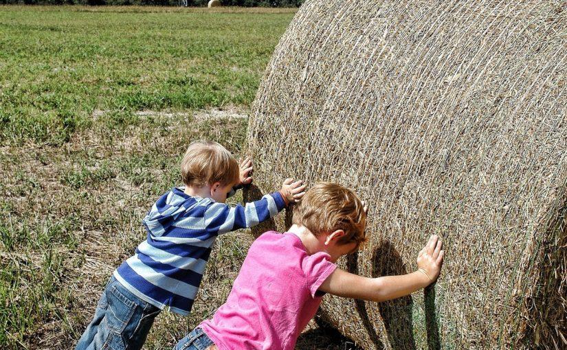 Dzieci rolników pod ochroną Pocztowego TUW