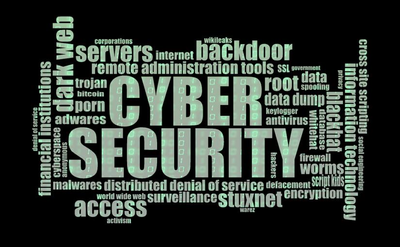 Cyberpolisy zyskują na popularności