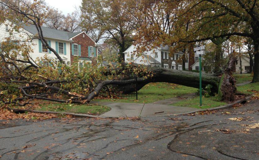 Gothaer: Anomalia pogodowe to powód, aby zadbać o ubezpieczenie domu